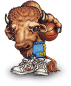 Sammy Bison