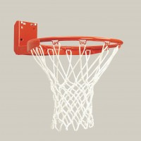 Standard Rear Mount Competition Basketball Goal