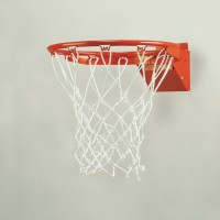 TruFlex™  Competition Breakaway Basketball Goal - 1 Year