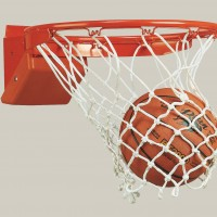 Elite Competition Breakaway Basketball Goal - 5 Year