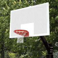 Ultimate Official Perforated Basketball System