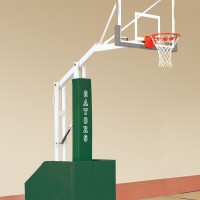 T-Rex 54 JR Recreational Portable Basketball System.  17 colors