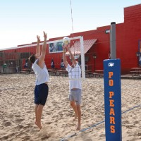 Competition Outdoor Volleyball System.  (18 colors)